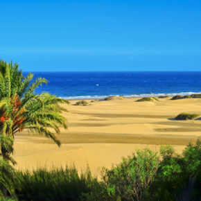 Gran Canaria: 8 days with hotel & flights from 1018 DKK