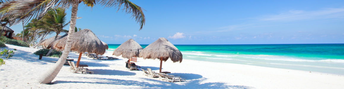 Amazing: 15 days to the Dominican Republic with hotel & flights only 2455 DKK