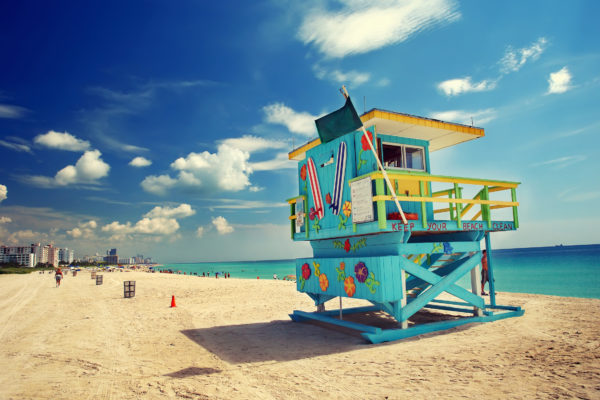 Miami Baywatch