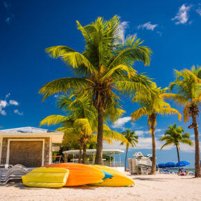 12 days to Miami with 6-day Caribbean cruise & full board incl. flights for only 5915 SEK