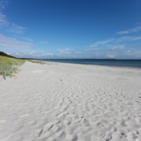 Baltic Sea: 3 days in Rostock in a cool container hostel with breakfast & extras from 339kr