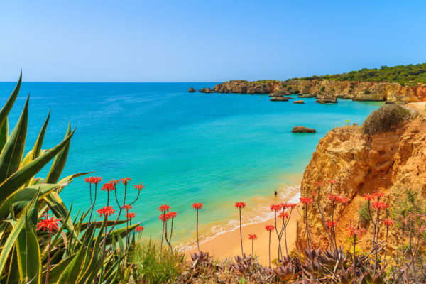 Algarve View