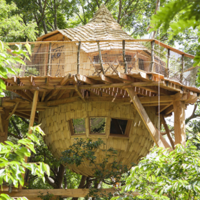 3 days at a 4* luxury treehouse in France 1257 DKK