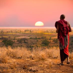 Africa Safari: 7 days in Tanzania with accomodation, half board, excursions & flights from 11.579kr