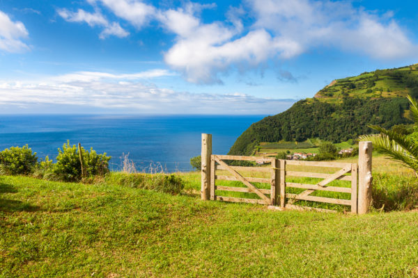 Azores Fence