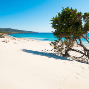 Italy: 5 days in Alba Adriatica with flights, 3* hotel & rooftop pool for 584 DKK
