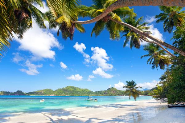 Seychelles Mahé Beach