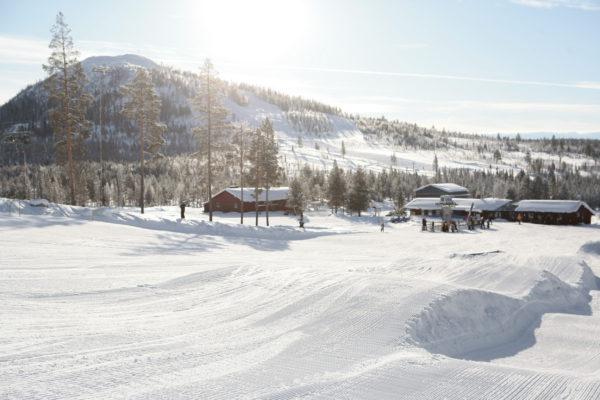 Tänneskröket Ski