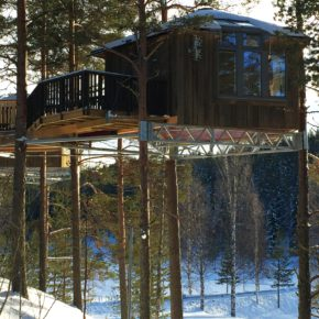 Chase the Northern Lights: 4 days Sweden at great hotel, tree house, half board & flights from 6.379kr